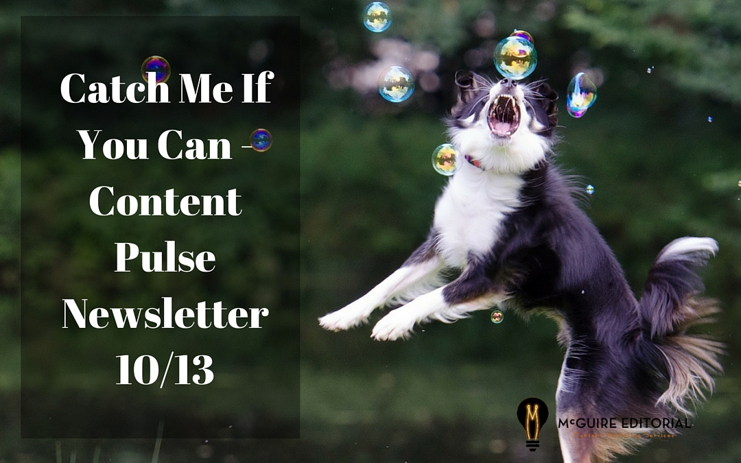 Catch Me If You Can – Content Pulse Newsletter for Oct. 13